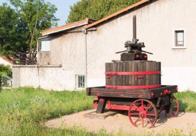 Ord og uttrykk fra vinens verden del 1